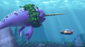 La Pat'Patrouille des Mers sauve un narval