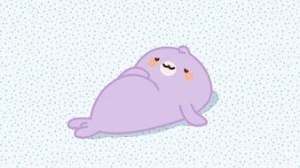 Le bébé phoque