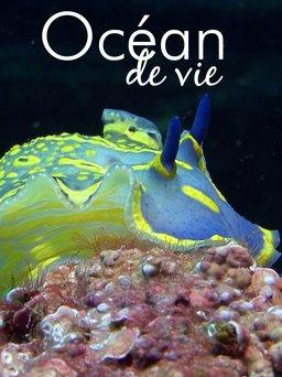 Regarder Un océan de vie en vidéo