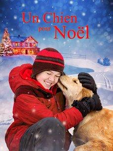 Un chien pour Noël: regarder le film