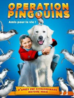 Regarder Opération Pingouins en vidéo
