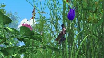 Fleur de l'oubli