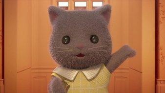 Bonjour la famille chat persan