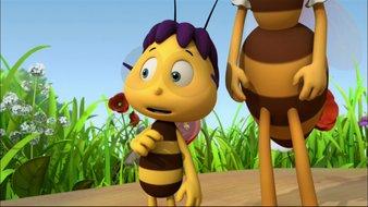 Une nouvelle à la ruche