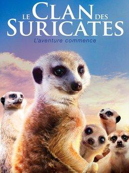 Regarder Le Clan des suricates en vidéo