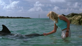 Alyssa et les dauphins