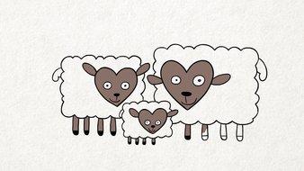 Moutons et cœurs