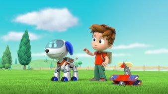 Robot-chien, le dépanneur