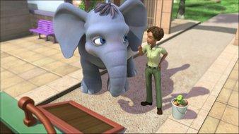 Wilson et l'éléphant