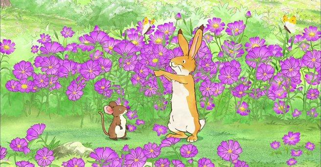 Regarder: Le champ de fleurs