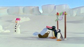 Pingu et Pinga dans le vent