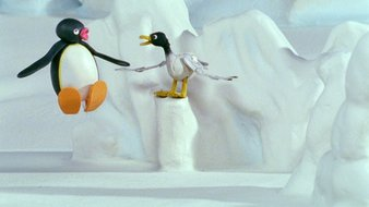 Pingu essaie de voler