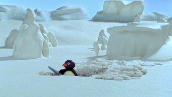 Pingu creuse un trou