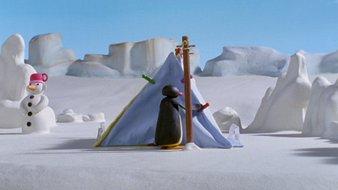 Pingu et Pinga font du camping