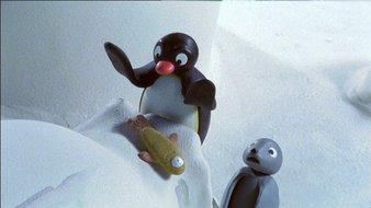 Pingu veut épater son ami