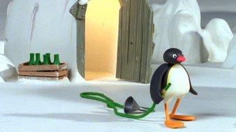 Pingu et le tuyau