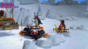 Pingu fait de la luge