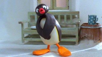 Pingu a trop mangé
