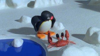 Pingu et les animaux