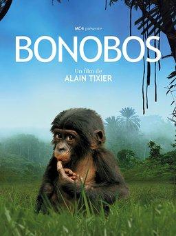 Regarder Bonobos en vidéo