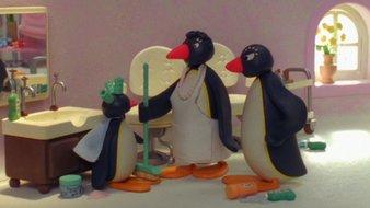 Pingu veut être beau