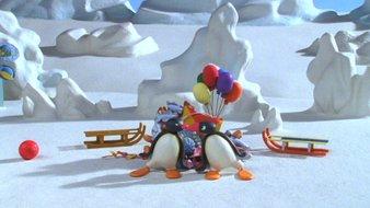 Pingu s'est battu