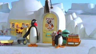 Pingu et l'igloo