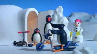 Le nouveau scooter de Pingu