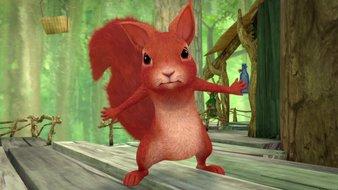 Une querelle chez les écureuils