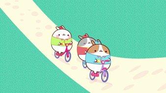La promenade à vélo