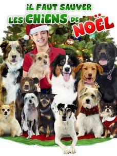 Il faut sauver les chiens de Noël: regarder le film