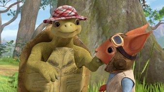 Le grand sauvetage de la tortue
