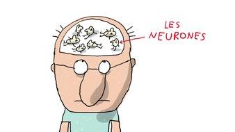 C'est quoi la maladie d'Alzheimer?